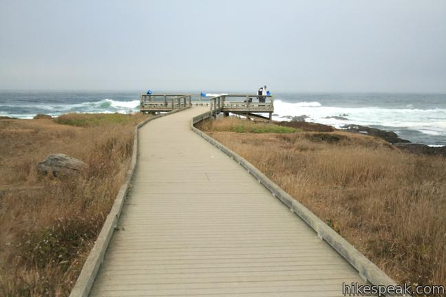 This 0.6-mile boardwalk provides an easy oceanfront hike in MacKerricher State Park.