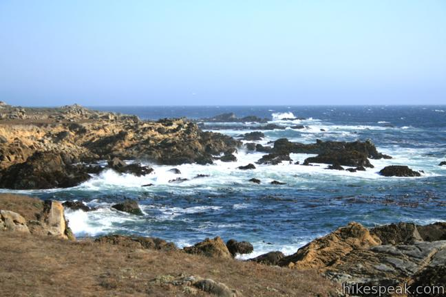 This 3-mile out and back hike explores the jagged coast at the heart of Salt Point State Park.