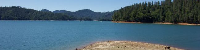 Bailey Cove Trail Shasta Lake Hike Shasta-Trinity National Forest California