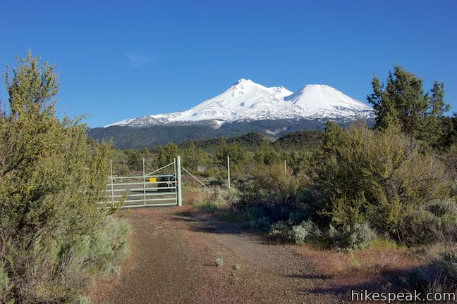 Treat yourself to views of Mount Shasta right from the start of this 2.55-mile lollipop loop hike.
