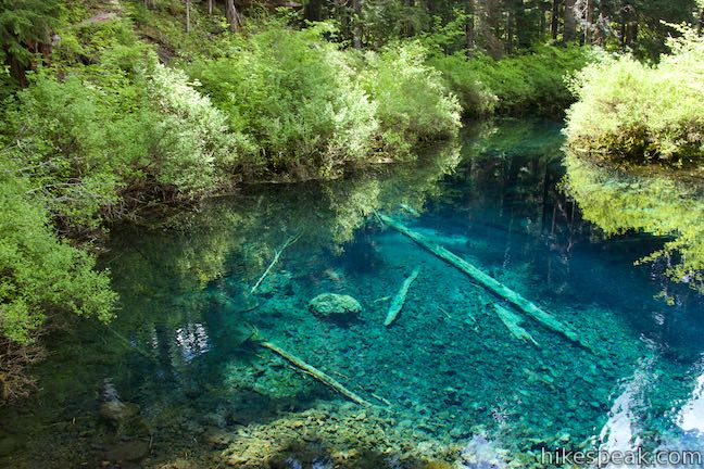 Great Spring Clear Lake McKenzie River