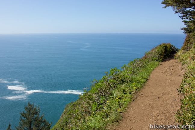 Cape Lookout Trail Oregon