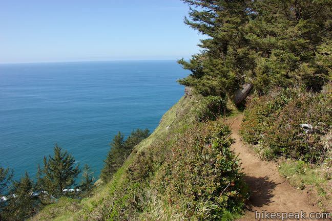 Cape Lookout Trail Oregon Hikespeak Com