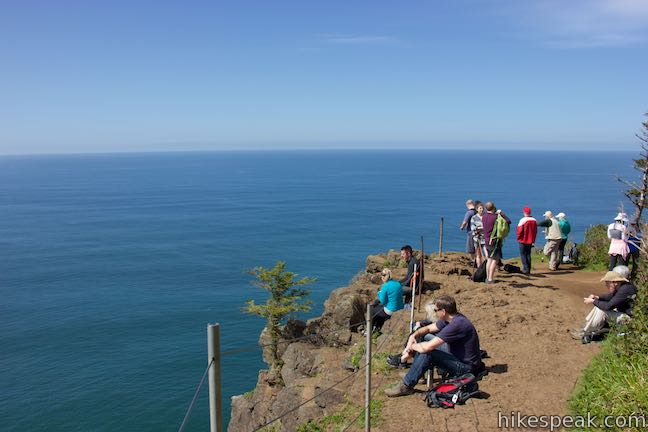 Cape Lookout Overlook