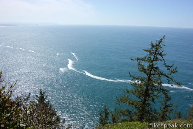 Cape Lookout Trail Ocean View