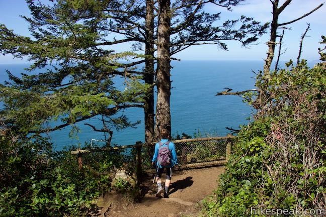 Cape Lookout Trail Viewpoint