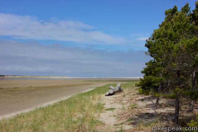 Whalen Island Beach Hike