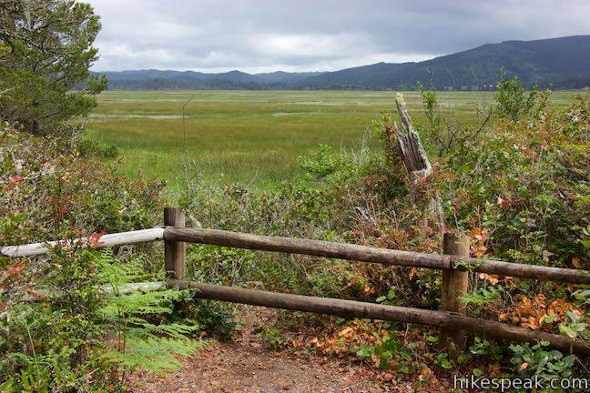 Whalen Island Loop Trail Lillian Parker Craft Wetland