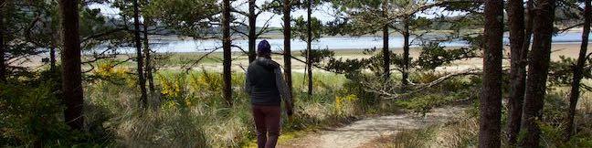 Cape Lookout Trail Coastal Hike Cape Lookout State Park Oregon