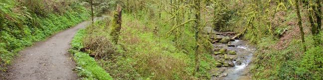 Lower Macleay Park to Pittock Mansion via Lower Macleay Trail Wildwood Trail Upper Macleay Trail Forest Park Hike Portland Oregon