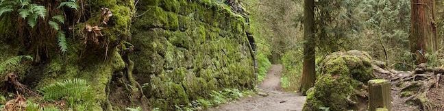Lower Macleay Trail to Stone House Witch's Castle Forest Park Portland Oregon Willamette Heights Loop Lower Macleay Park