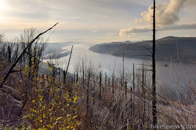 Angel's Rest Trail Wildfire damage view