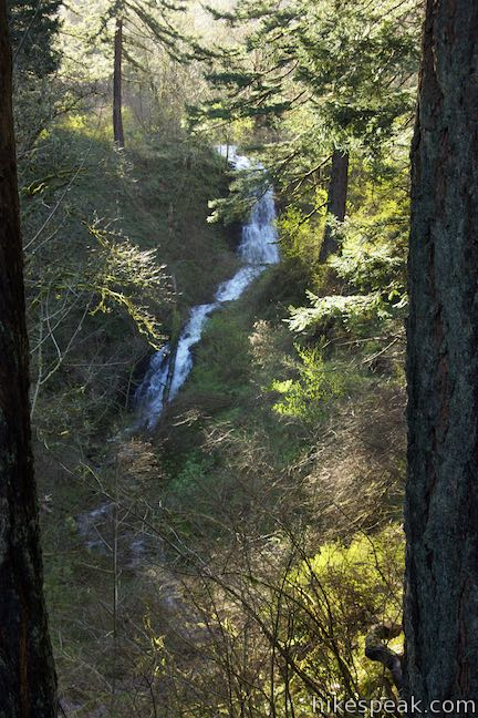 Upper Coopey Falls Columbia River Gorge