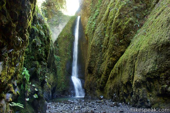 This off-trail adventure up Oneonta Gorge passes between tall, narrow cliffs to reach an enchanting 100-foot waterfall.