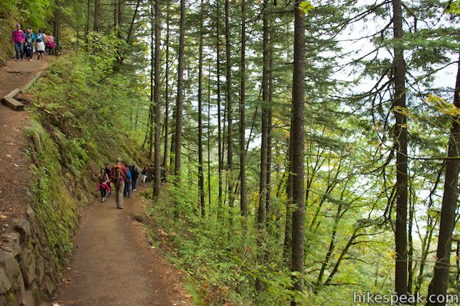 Larch Mountain Trail