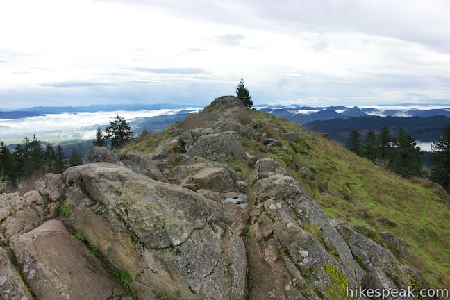This hike near Eugene goes through a fern-packed forest and ascends to the crown of a butte with round-the-compass views.