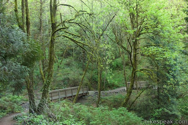 Flicker Trail Marquam Nature Park