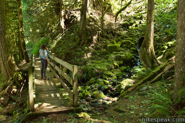 Old Salmon River Trail Cascade