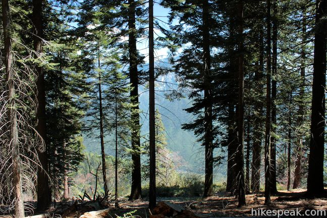 Bobcat Point Trail in Sequoia National Park