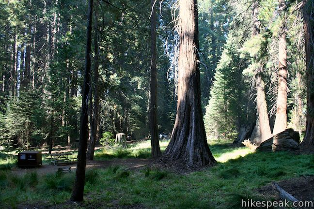kings canyon national pk single catholic girls The history of sequoia and kings canyon national parks is filled with colorful characters shorty lovelace called home what is now kings canyon national park.