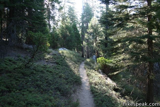 Hockett Trail in Sequoia National Park