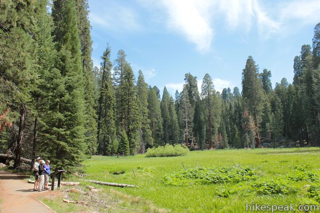 Round Meadow in Sequoia National Park