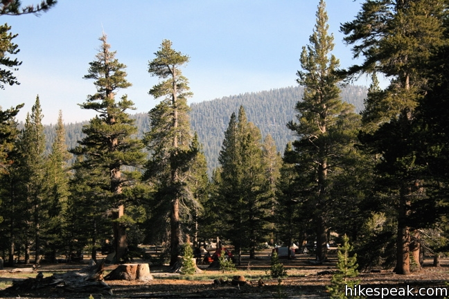 Horseshoe Meadow Campgrounds in the Golden Trout Wilderness