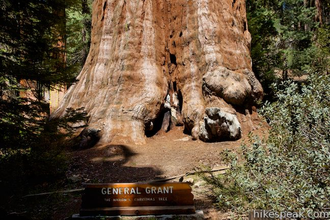 This 0.8-mile loop in the Grant Grove passes through a Fallen Monarch to reach the General Grant Tree, one of the world's largest sequoias.