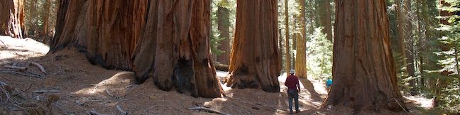 Hart Tree and Fallen Goliath Loop | Kings Canyon | Hikespeak.com Galith Mountain Map on