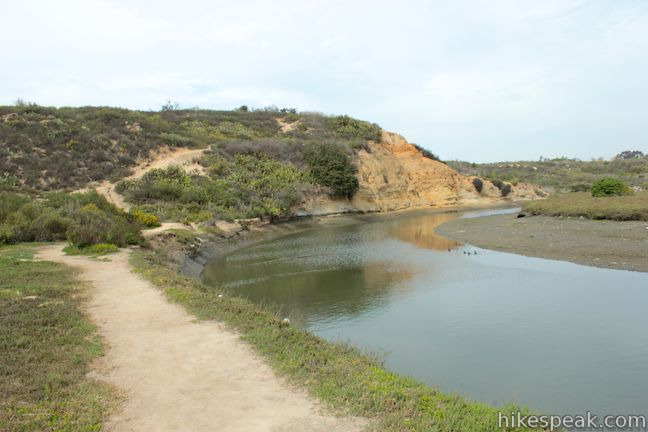 This 2.5-mile loop combines trails above and below the West Bluff in Upper Newport Bay Nature Preserve to provide a variety of views across Upper Newport Bay.