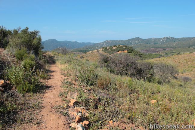 This 1.35 to 1.55-mile loop examines common plants in the Santa Ana Mountains, along with uncommon views views across the mountain range, passing an old mine for more fun.
