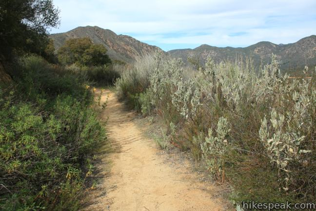 This 3 1/3-mile round trip hike follows an old road to an old campground with views over San Mateo Canyon in the Santa Ana Mountains.