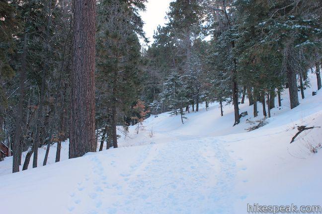 Towne Trail