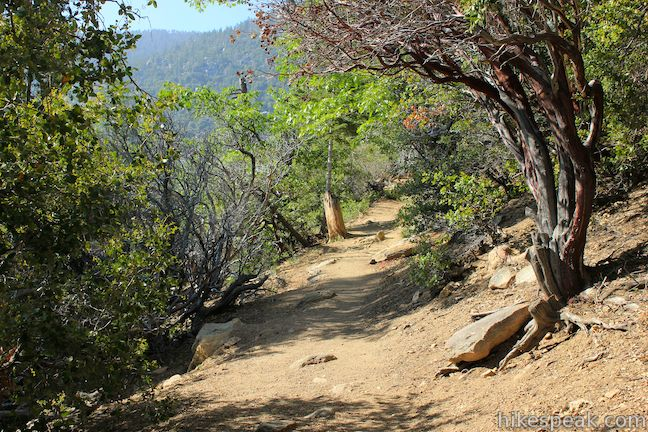 Ernie Maxwell Scenic Trail San Jacinto Mountains