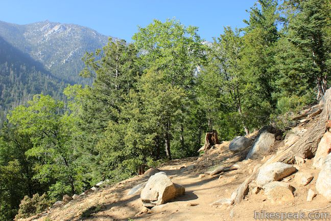 This gradual 5.2-mile round trip hike near Idyllwild crosses quiet forests with rugged mountain views.