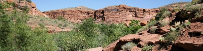 Negro Bill Canyon Trail Moab Utah