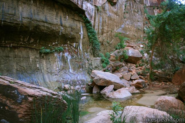 Riverside Walk Zion National Park Hike Utah Trail