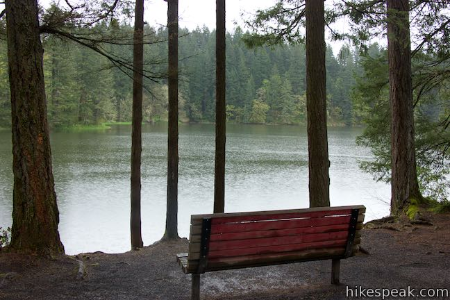 Round Lake Loop Bench