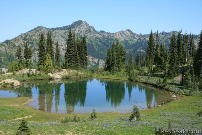 This 3.75-mile loop crosses fields of summer wildflowers, passes subalpine lakes, and offers great views of Mount Rainier.