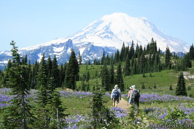 Naches Peak Loop Trail in Mount Rainier National Park