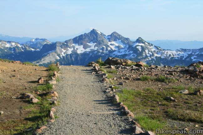 This tremendously scenic 5.5-mile loop explores the slopes of Mount Rainier and should be consider the park's must-do hike.
