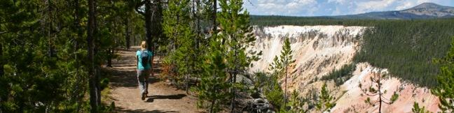 Point Sublime Trail South Rim hike Grand Canyon of the Yellowstone River in Yellowstone National Park