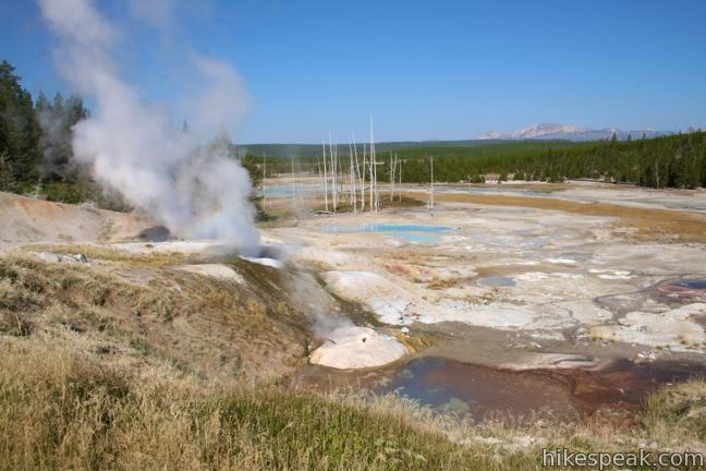 This pair of short loops explores a stark basin with an impressive collection of hot springs and geysers like Ledge Geyser (shown).