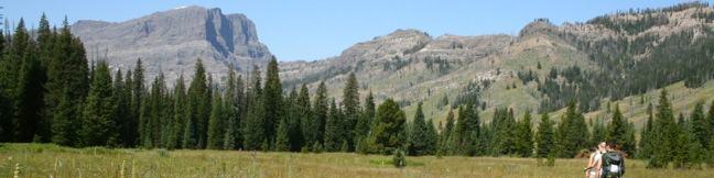 Pebble Creek Trail Yellowstone National Park hike backpacking