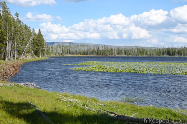 Riddle Lake Trail in Yellowstone National Park