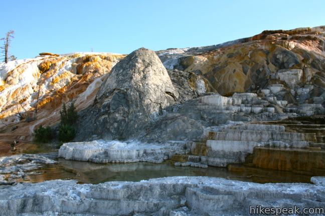 Palette Spring Mammoth Hot Springs Yellowstone