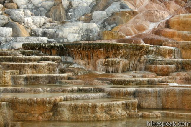 This 1.75-mile series of boardwalks explores an amazing collection of colorful hot springs terraces, including Palette Spring Springs (shown).