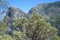 Hetch Hetchy Trail