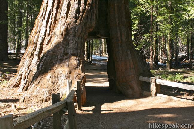 This 1.8 to 8-mile hike explores a giant sequoia grove in Yosemite National Park, which can be seen on foot or by tram.