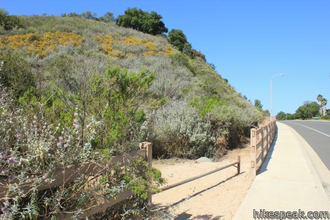 Rosewood Trail to Angel Vista